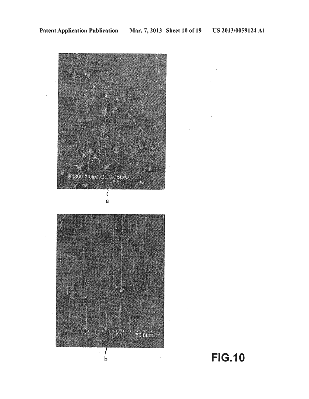METHOD OF MANUFACTURING CARBON NANOTUBE, SINGLE-CRYSTAL SUBSTRATE FOR     MANUFACTURING CARBON NANOTUBE, AND CARBON NANOTUBE - diagram, schematic, and image 11