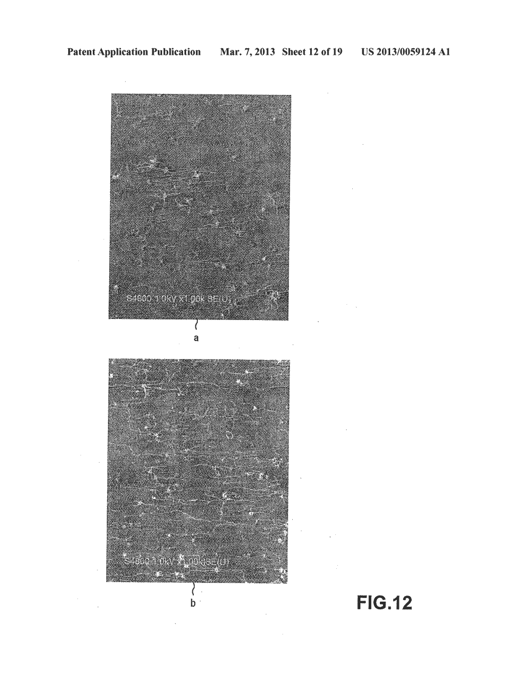 METHOD OF MANUFACTURING CARBON NANOTUBE, SINGLE-CRYSTAL SUBSTRATE FOR     MANUFACTURING CARBON NANOTUBE, AND CARBON NANOTUBE - diagram, schematic, and image 13