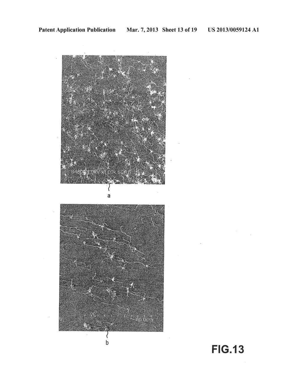 METHOD OF MANUFACTURING CARBON NANOTUBE, SINGLE-CRYSTAL SUBSTRATE FOR     MANUFACTURING CARBON NANOTUBE, AND CARBON NANOTUBE - diagram, schematic, and image 14
