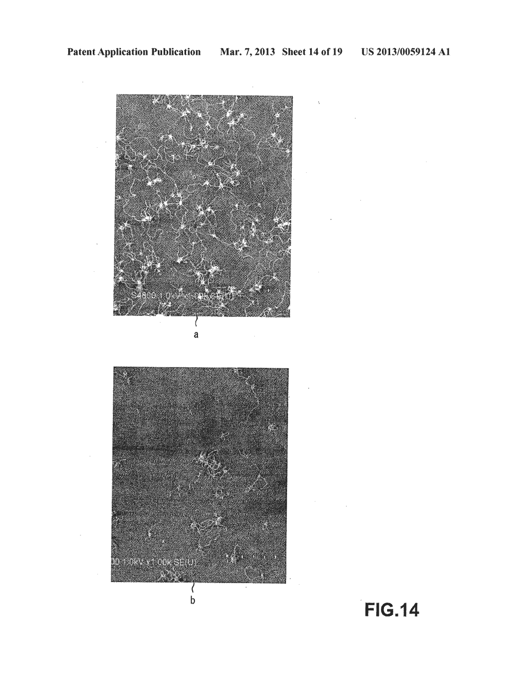 METHOD OF MANUFACTURING CARBON NANOTUBE, SINGLE-CRYSTAL SUBSTRATE FOR     MANUFACTURING CARBON NANOTUBE, AND CARBON NANOTUBE - diagram, schematic, and image 15