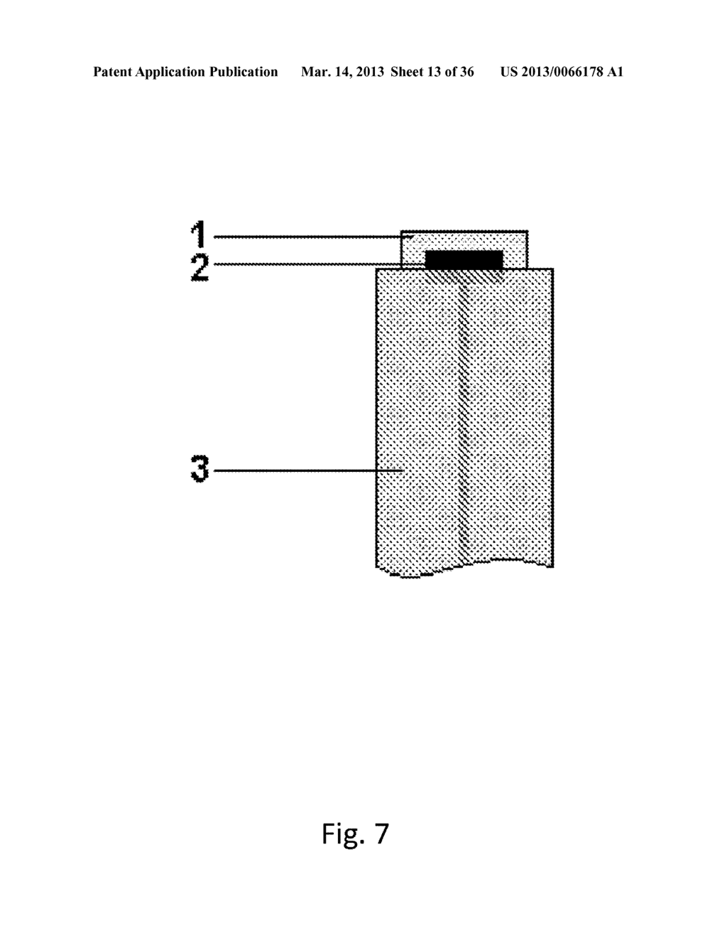 Lyotropic Liquid Crystal Coated Analyte Monitoring Device and Methods of     Use - diagram, schematic, and image 14