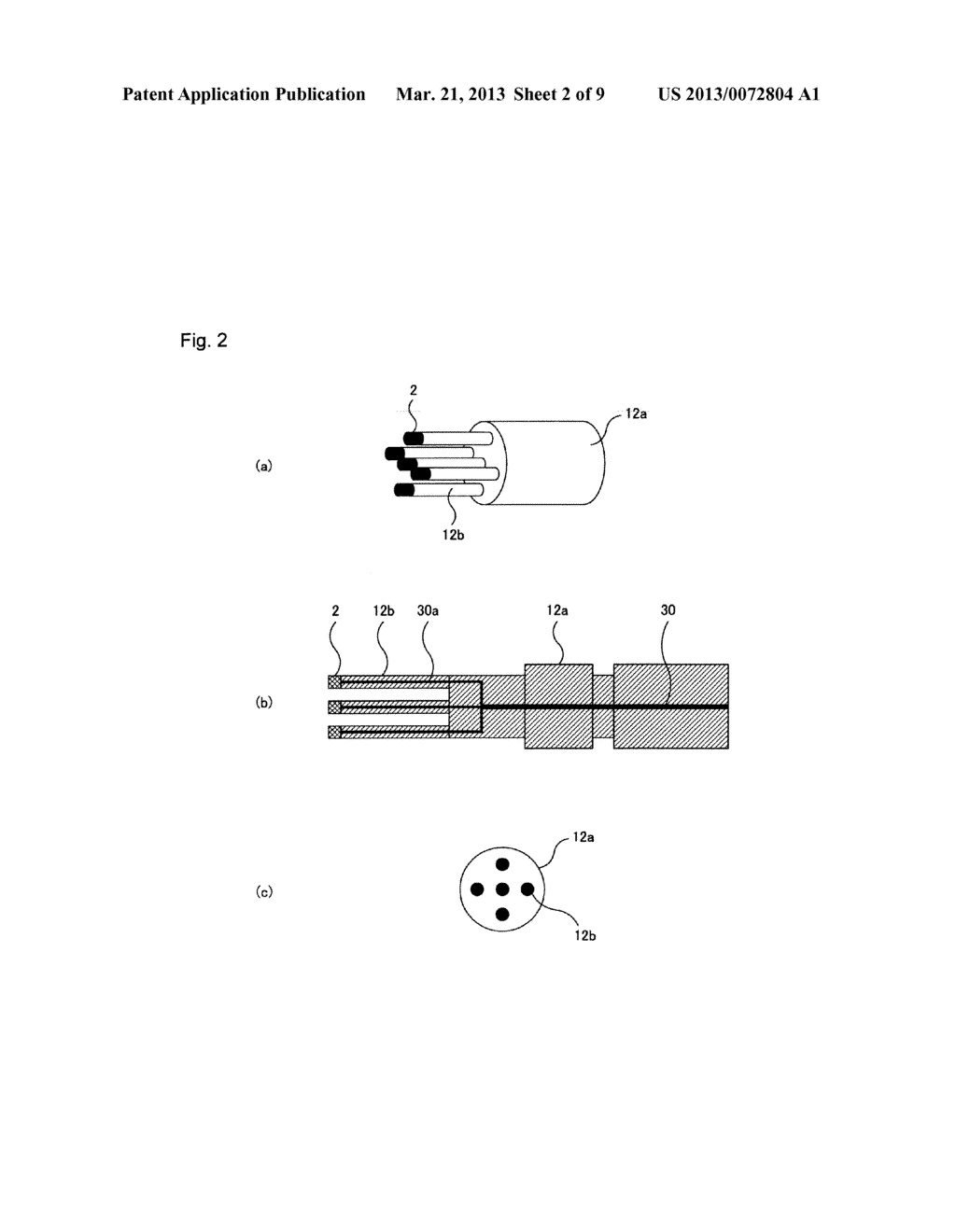LIGHT TRANSMITTING PROBE, LIGHT RECEIVING PROBE, LIGHT TRANSMITTING AND     RECEIVING PROBE, AND LIGHT MEASUREMENT DEVICE USING SAME - diagram, schematic, and image 03