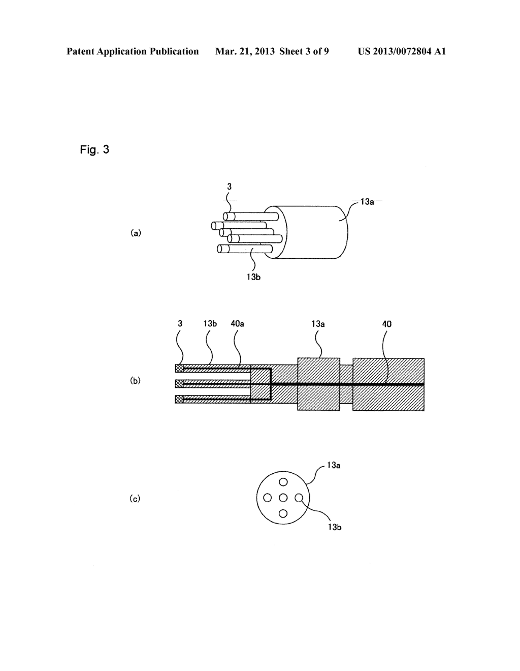 LIGHT TRANSMITTING PROBE, LIGHT RECEIVING PROBE, LIGHT TRANSMITTING AND     RECEIVING PROBE, AND LIGHT MEASUREMENT DEVICE USING SAME - diagram, schematic, and image 04