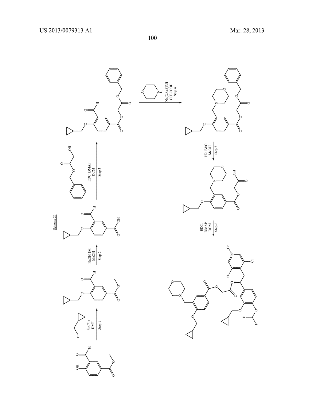 DERIVATIVES OF 1-PHENYL-2-PYRIDINYL ALKYL ALCOHOLS AS PHOSPHODIESTERASE     INHIBITORS - diagram, schematic, and image 101