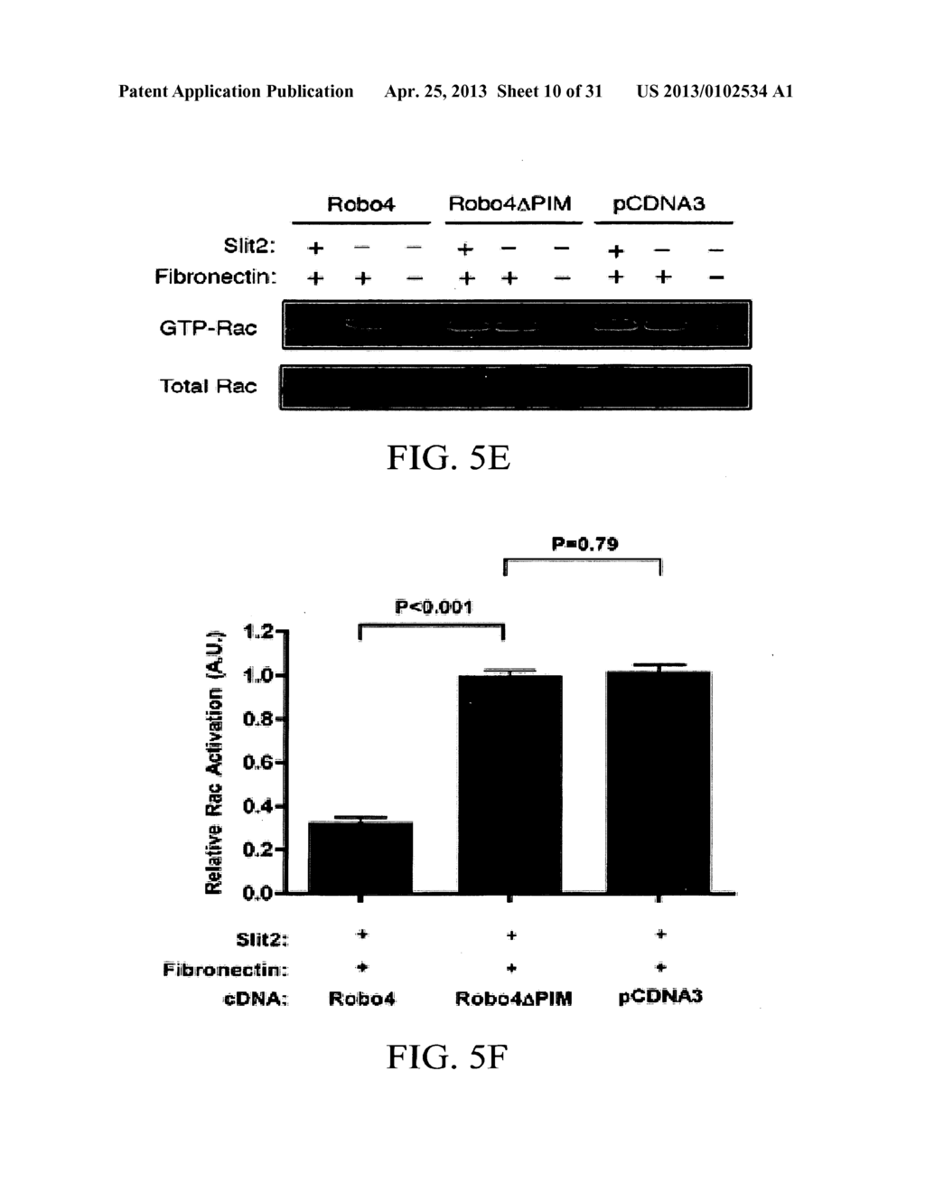 COMPOSITIONS AND METHODS FOR TREATING PATHOLOGIC ANGIOGENESIS AND VASCULAR     PERMEABILITY - diagram, schematic, and image 11