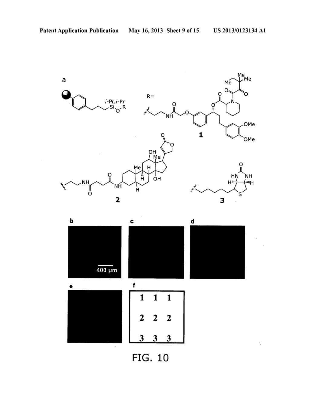 SMALL MOLECULE PRINTING - diagram, schematic, and image 10