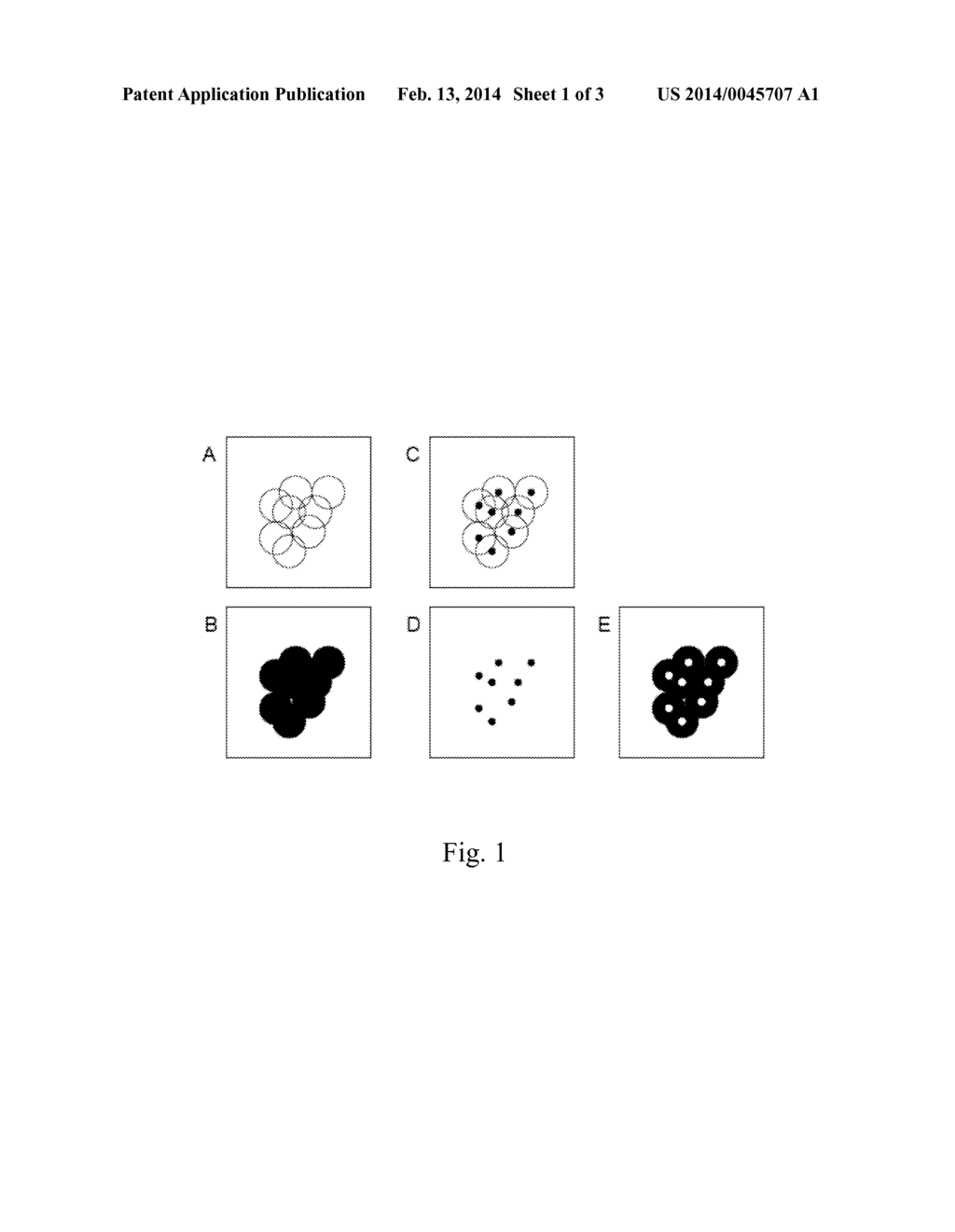 CENTROID MARKERS FOR IMAGE ANALYSIS OF HIGH DENSITY CLUSTERS IN COMPLEX     POLYNUCLEOTIDE SEQUENCING - diagram, schematic, and image 02