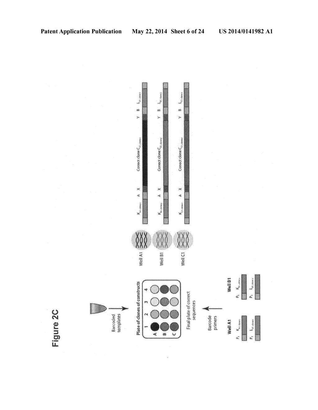 Methods for sorting nucleic acids and multiplexed preparative in vitro     cloning - diagram, schematic, and image 07