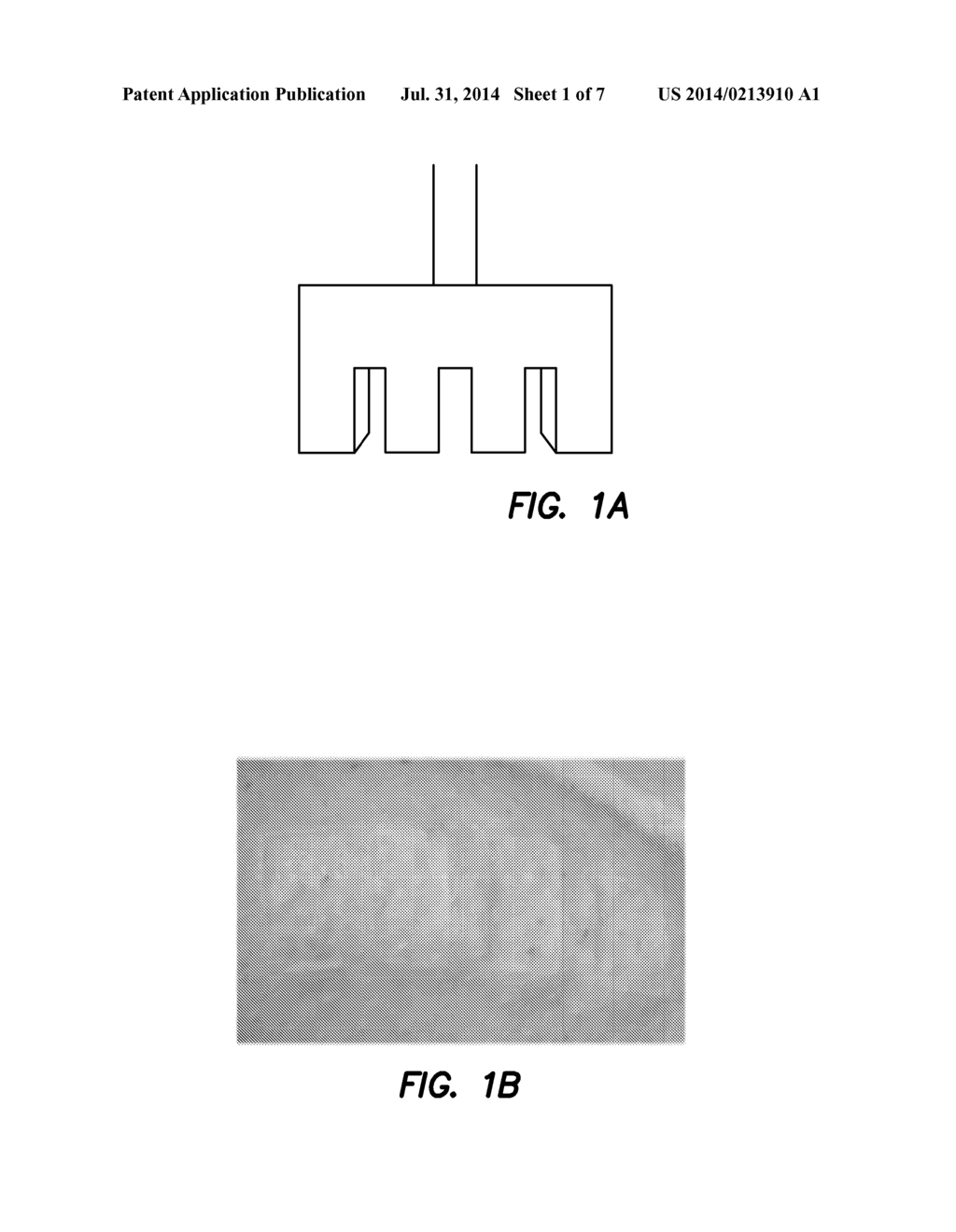 METHOD AND APPARATUS FOR PERFORMING QUALITATIVE AND QUANTITATIVE ANALYSIS     OF BURN EXTENT AND SEVERITY USING SPATIALLY STRUCTURED ILLUMINATION - diagram, schematic, and image 02