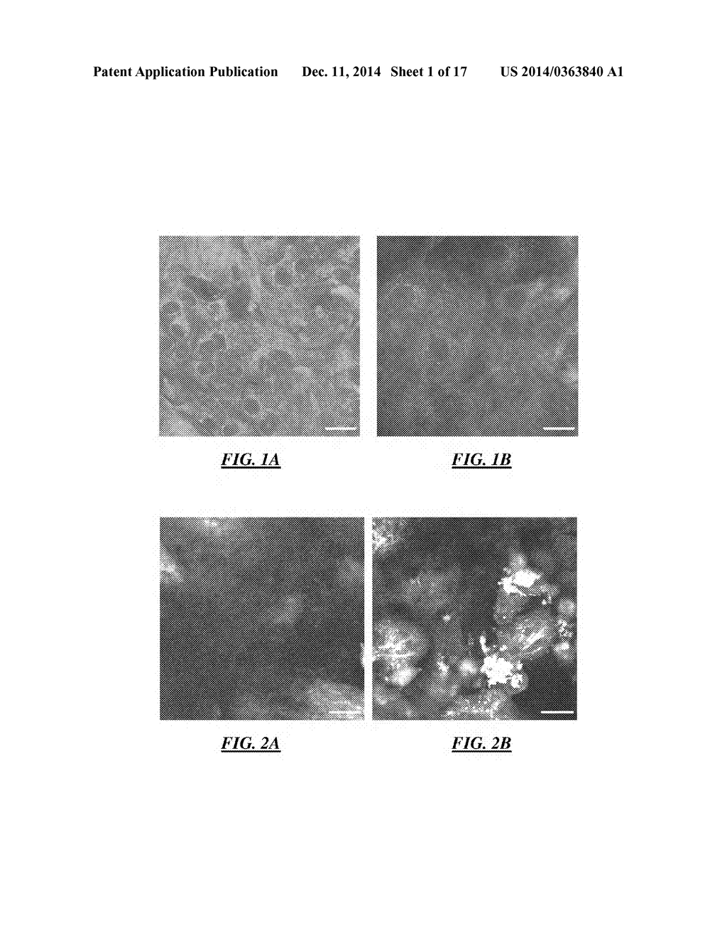 Method Of Determining The Viability Of At Least One Cell - diagram, schematic, and image 02