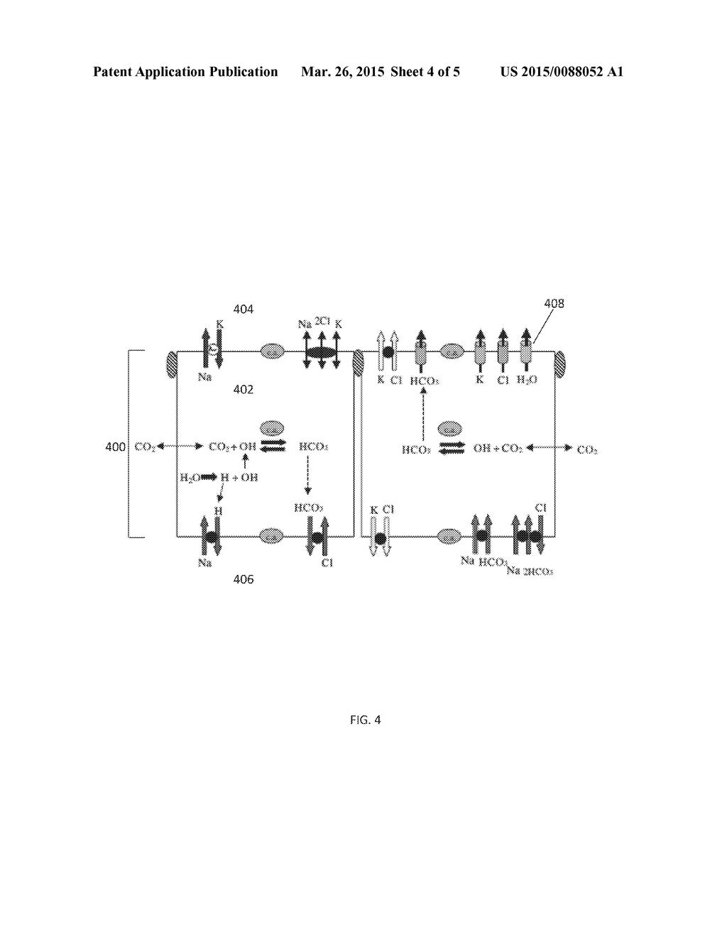 METHODS FOR IMPROVING CEREBROSPINAL FLUID FLOW - diagram, schematic ...