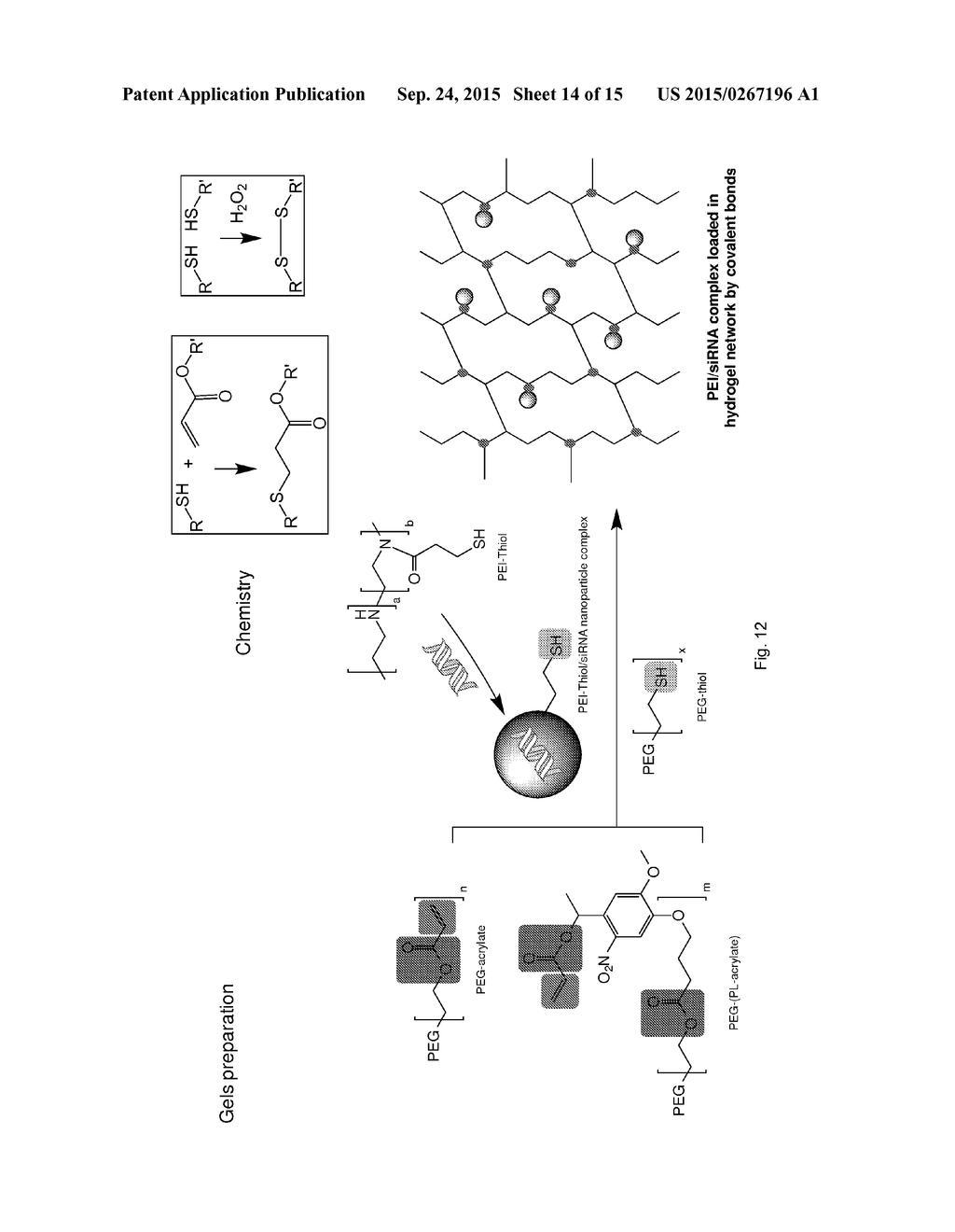 biodegradable hydrogel for polynucleotide delivery - diagram, schematic,  and image 15